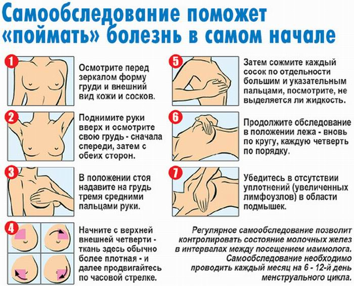Правила самообследования молочных желез