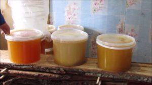 Какие бывают сорта меда, и их характеристика