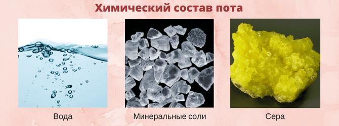 Химический состав пота