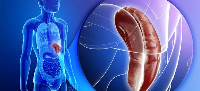 Причины кисты в селезенке и методы ее лечения