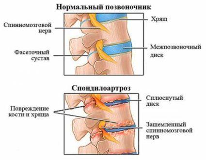 Обращайте внимание на внутренние сигналы вашего организма