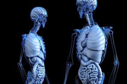 Одышка может быть одним из признаков того, что страдают легкие