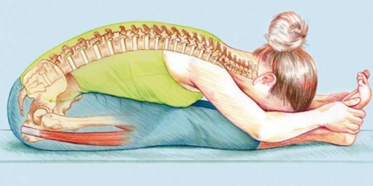 Путь к здоровой спине: йога для позвоночника