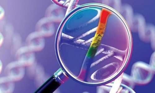 Охрана генетического кода