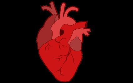Сердечные симптомы тоже могут относиться к этому недугу