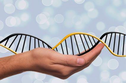 Генетика может оказаться одним из факторов, провоцирующих болезнь