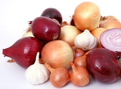 Сочетание горького растения с ягодами также оказывает лечебный эффект